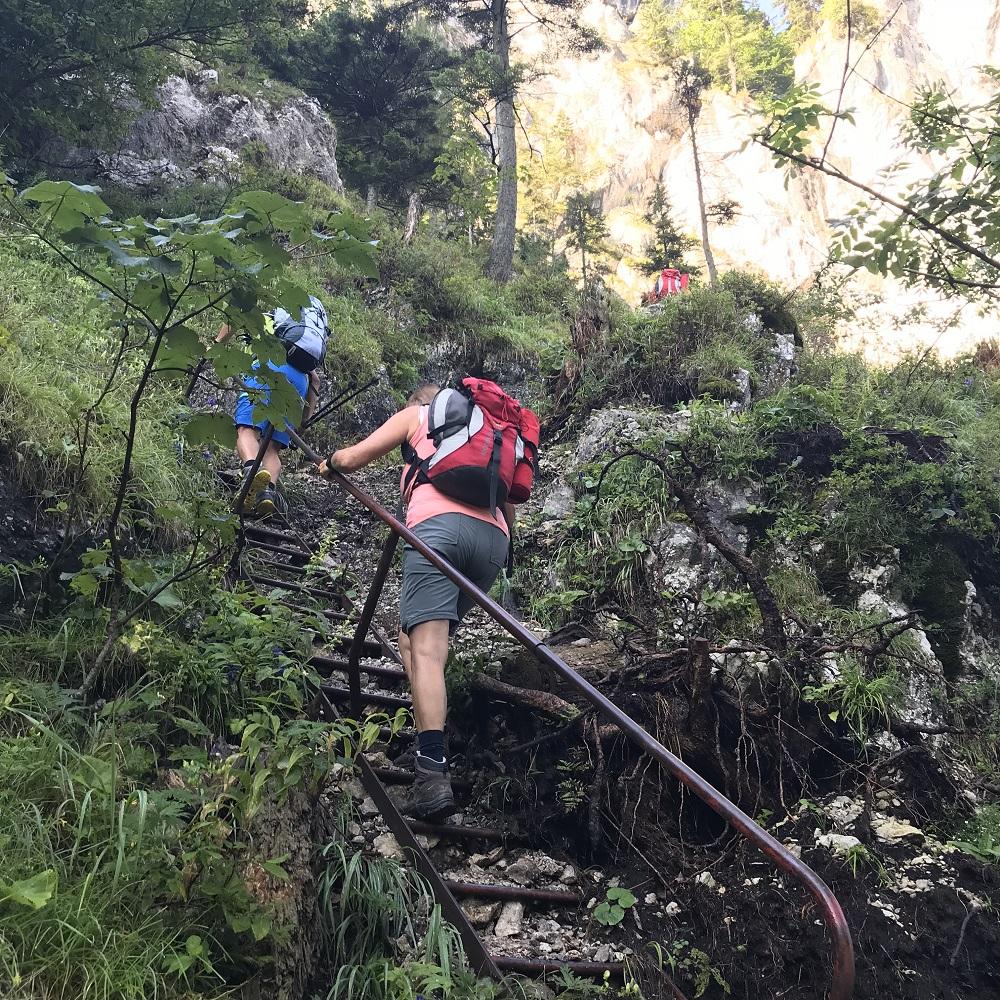 Leitern am Wachthüttelkamm
