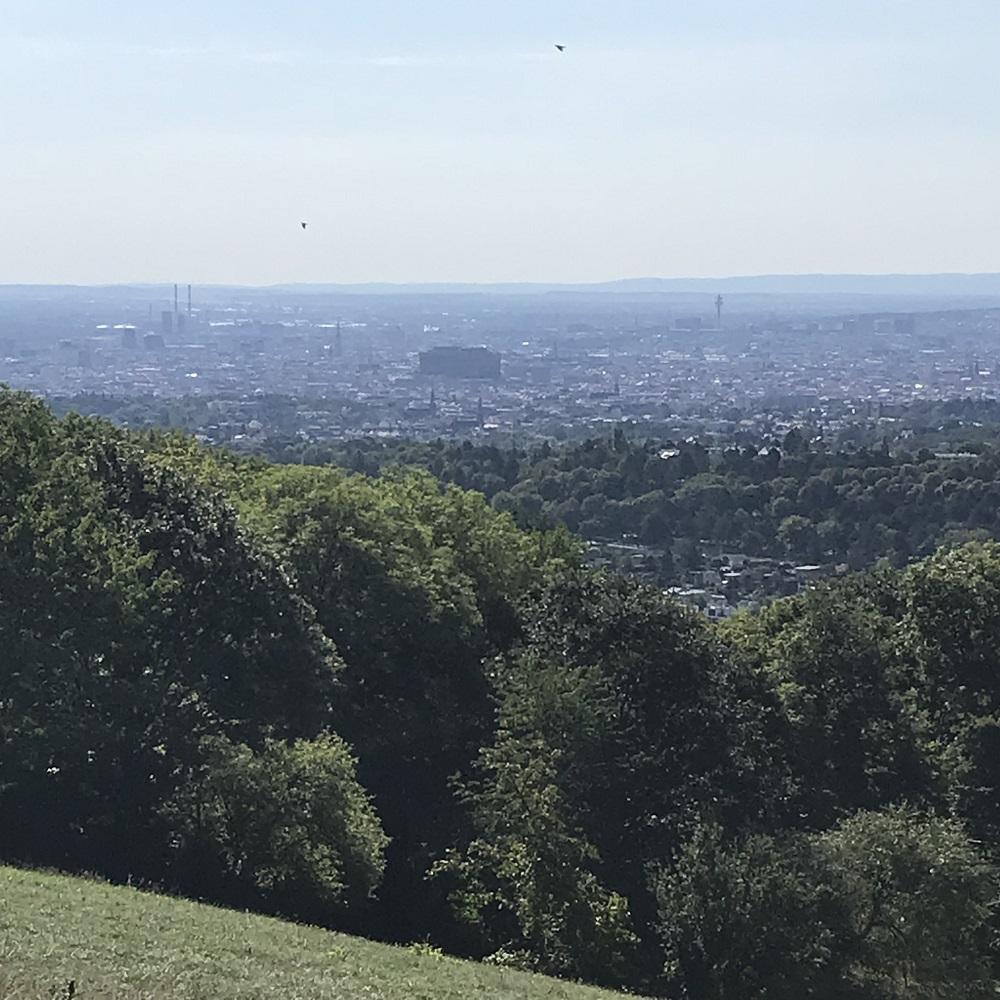 Blick vom Dreimarkstein auf Wien