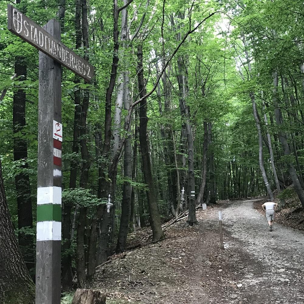 Stadtwanderweg 2