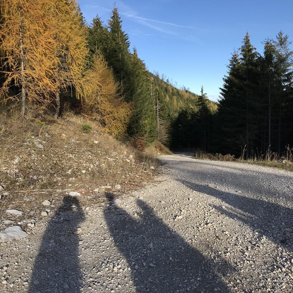 Güterweg Richtung Gscheidl