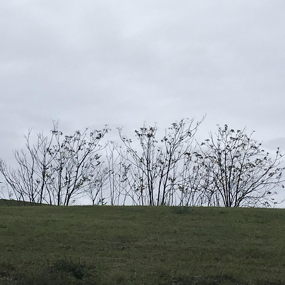 Erholungspark Heubergstätten