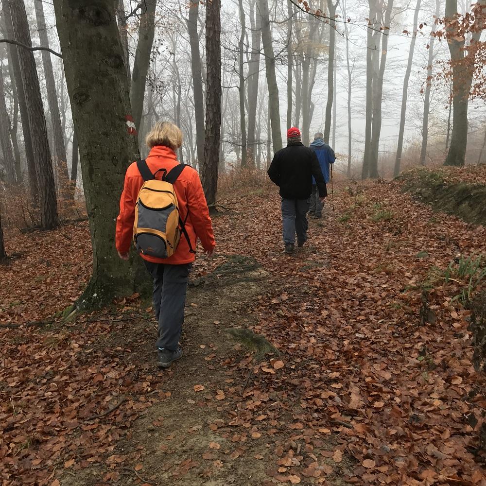 Abstieg nach Hadersdorf-Weidlingau