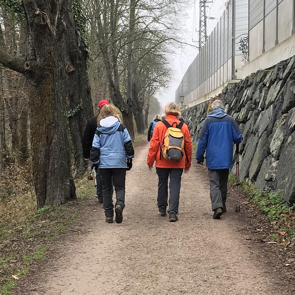 Weg entlang der Wien