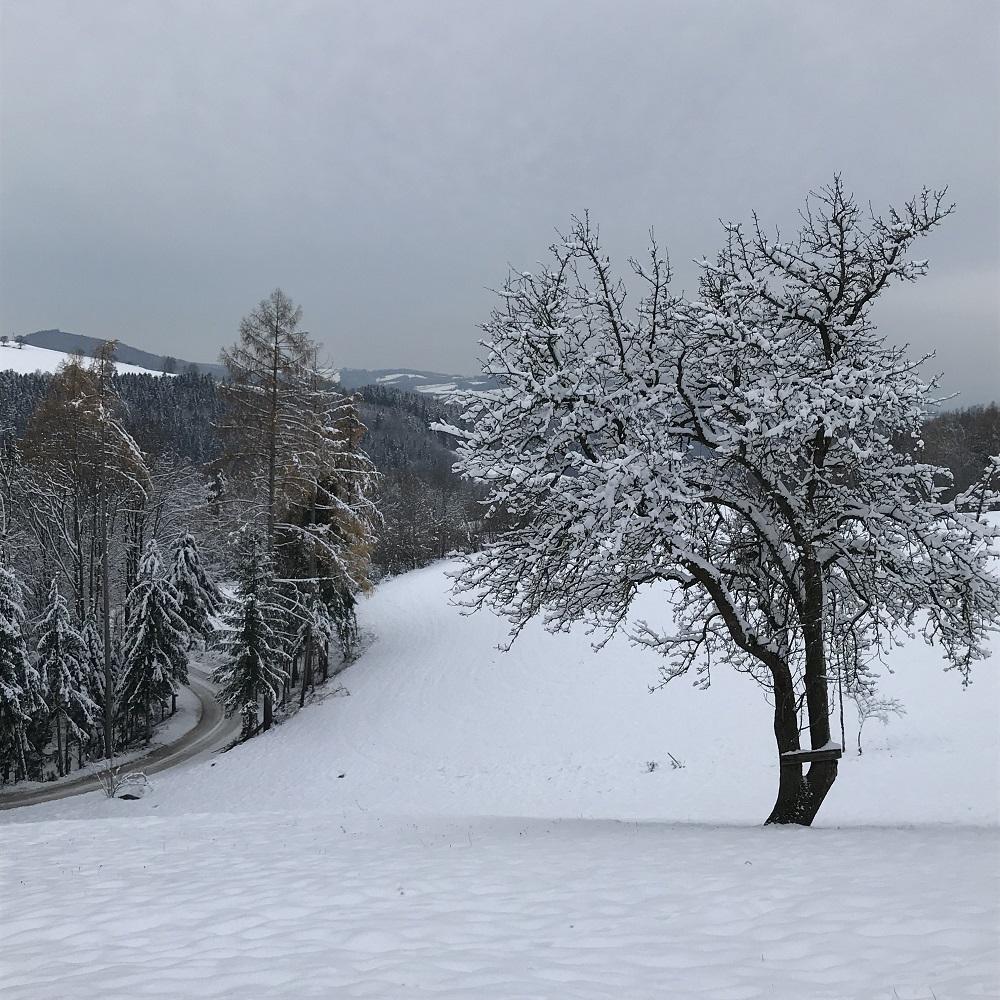 Abstieg nach Kreisbach