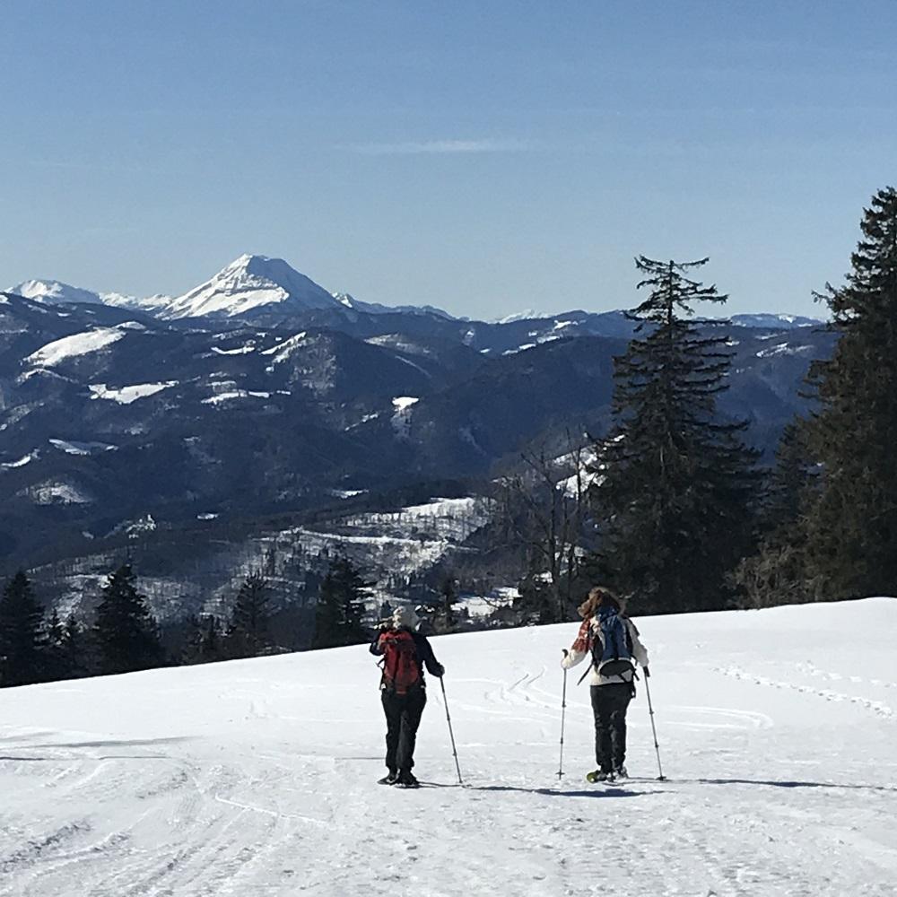 Abstieg zur Klosteralpe mit Blick zum Ötscher