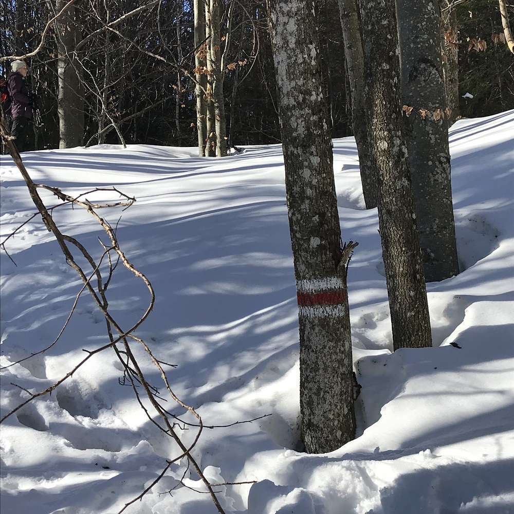 Markierung im Schnee