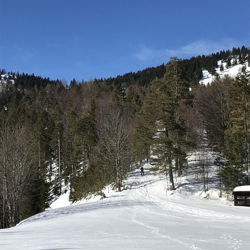 Aufstieg zur Gschwendthütte