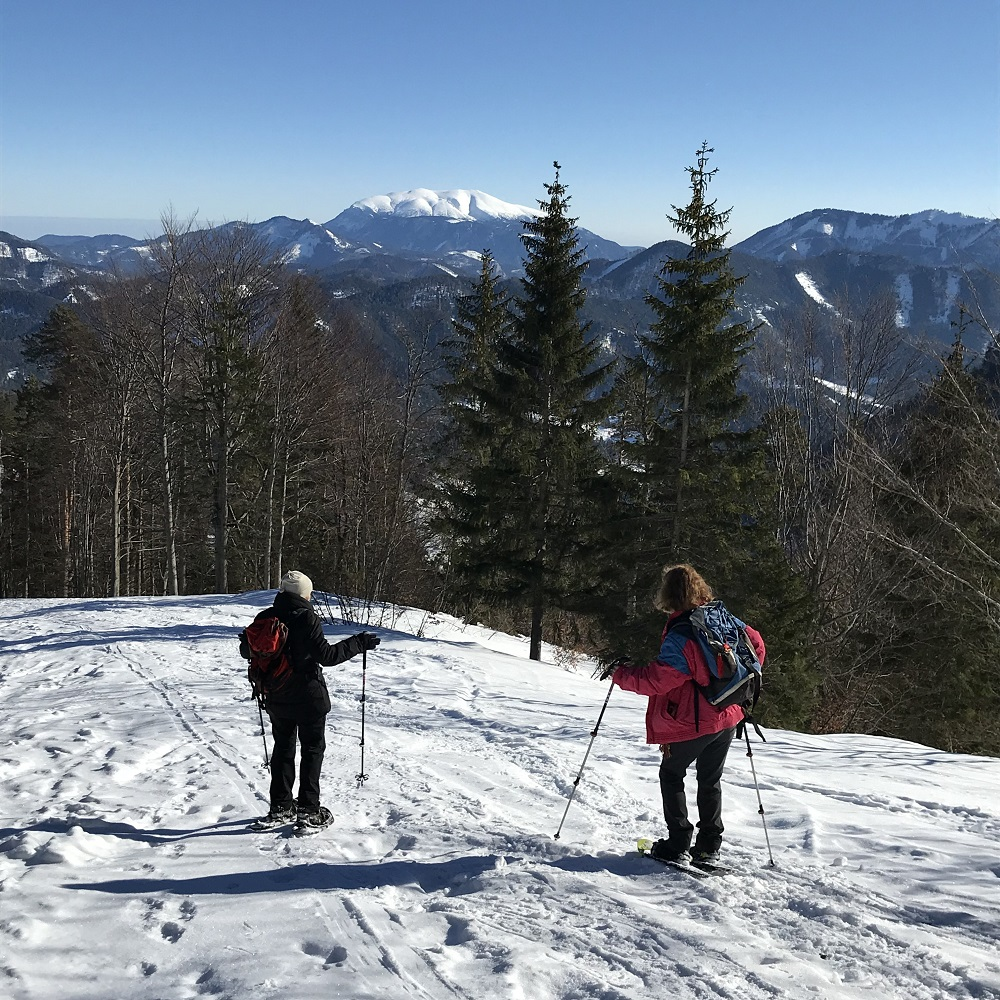Abstieg mit Blick zum Schneeberg