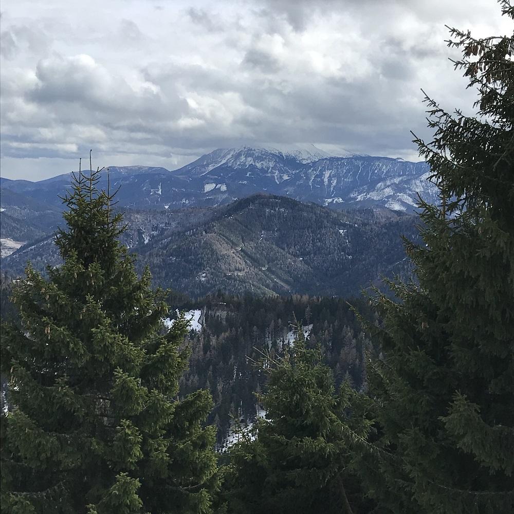 Blick zum Schneeberg (Gipfel im Nebel)