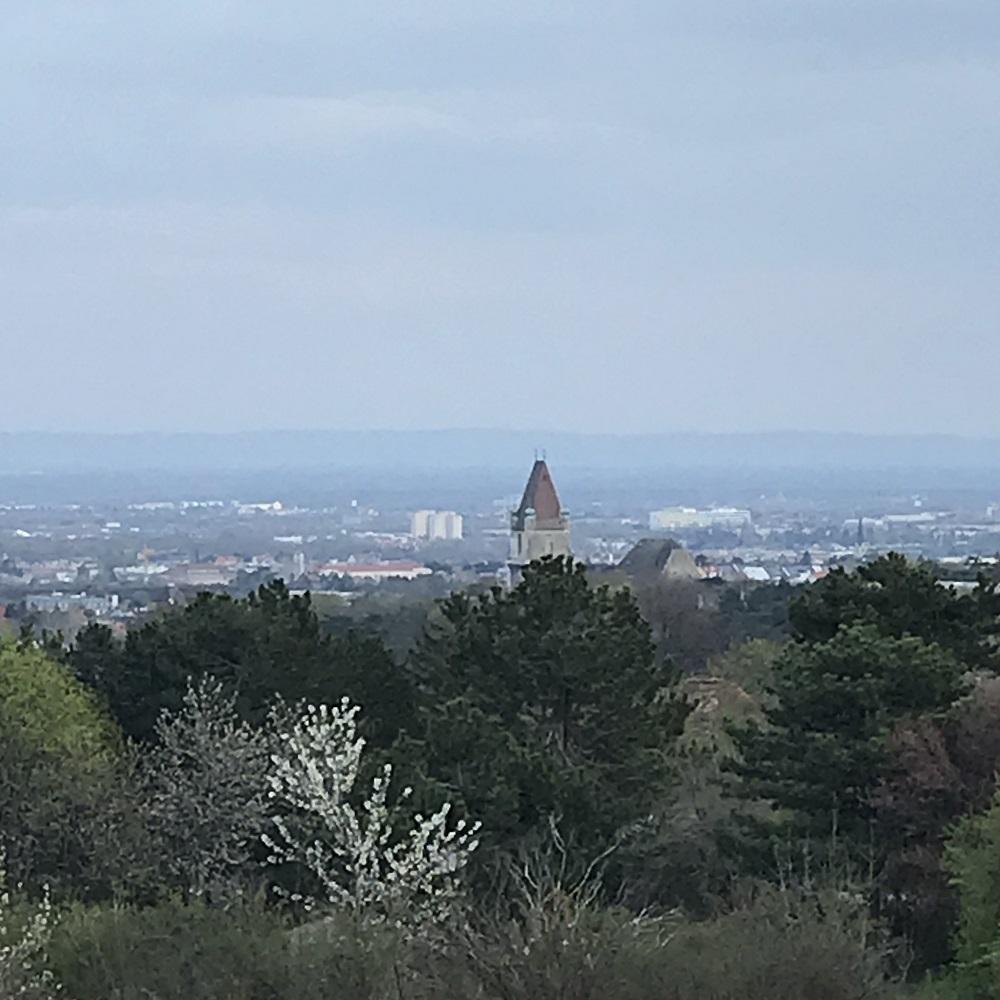 Blick auf Perchtoldsdorf