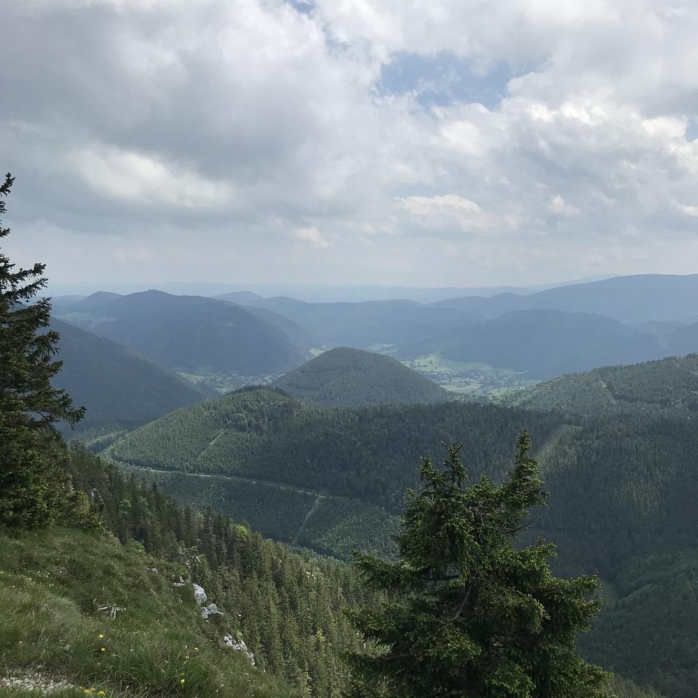 Blick vom Öhler ins Puchberger Tal