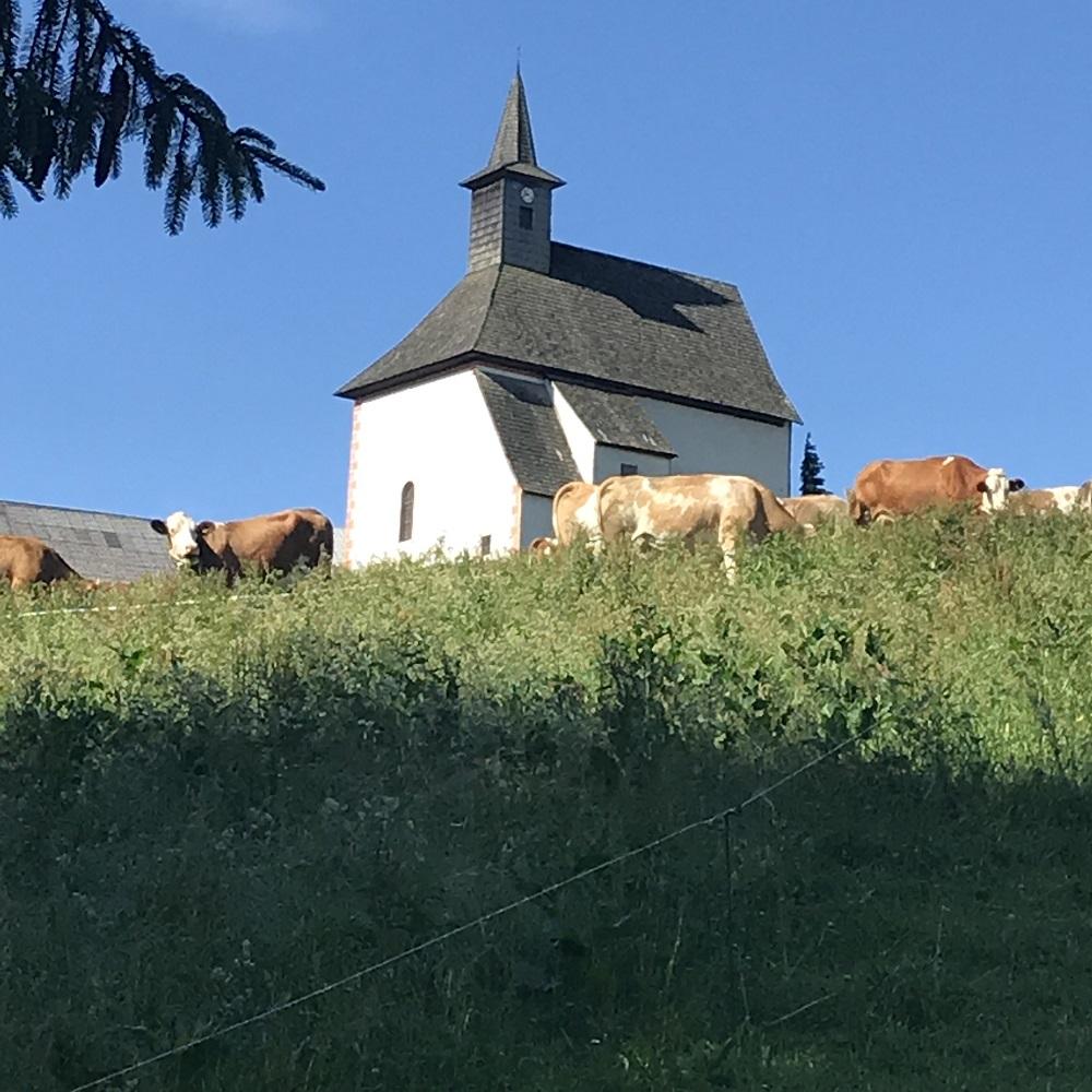 Joachimsberg