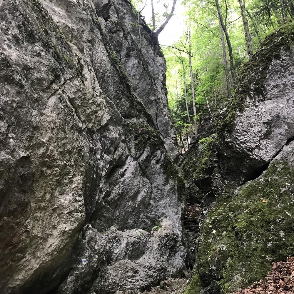 Steinwandklamm