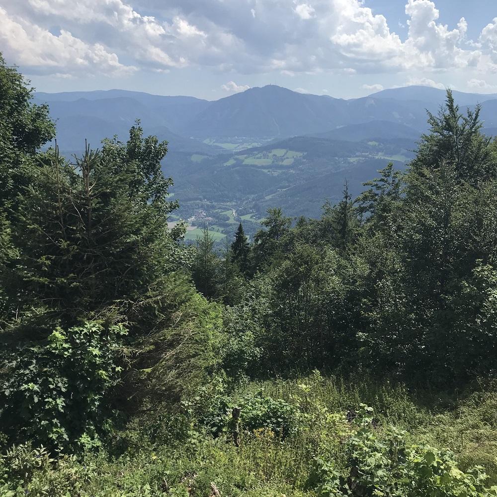 Blick von der Waldburgangerhütte zum Semmering