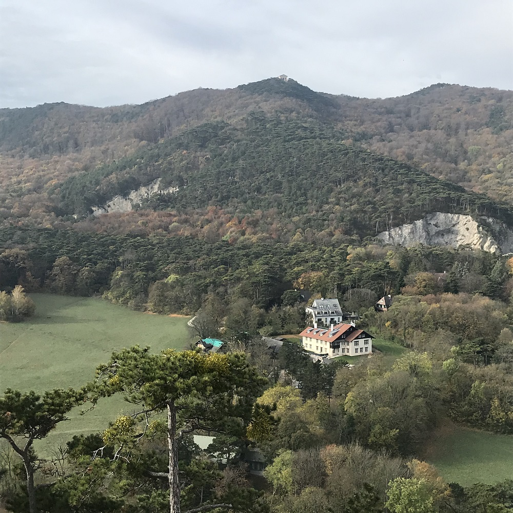 Blick über die Meiereiwiese zum Husarentempel