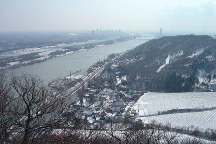 Nirgends-sieht-man-die-Wiener-Donau-so-schön-wie-hier-am-Nasenweg-zum-Leopoldsberg