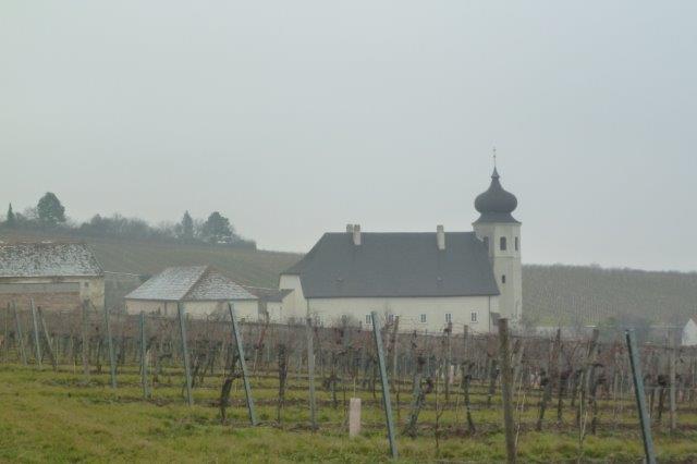 Thallern-Weingut-des-Stiftes-Heiligenkreuz