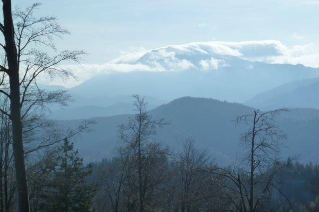 Blick-zum-Schneeberg