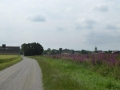 Radweg Marchfeldkanal