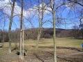 Wiese im Schwarzenbergpark