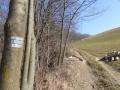 Aufstieg nach Hochneukirchen