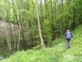 durchs Leithagebirge - der Weg ist durchgängig gut markiert (Weitwanderweg 02, Burgenlandweg)