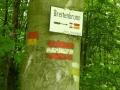 durchs Leithagebirge - Wegweiser Breitenbrunn