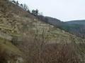 Weinterrassen am Loibenberg