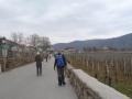 Weg zum Bahnhof Dürnstein