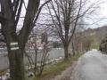 Weg Richtung Weidlingbach
